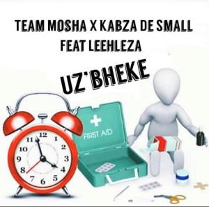 Team Mosha x Kabza De Small - U'zbheke ft. Leehleza